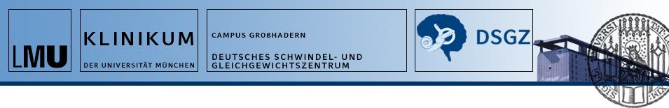 kopf-schwindelzentrumDSGZ.jpg